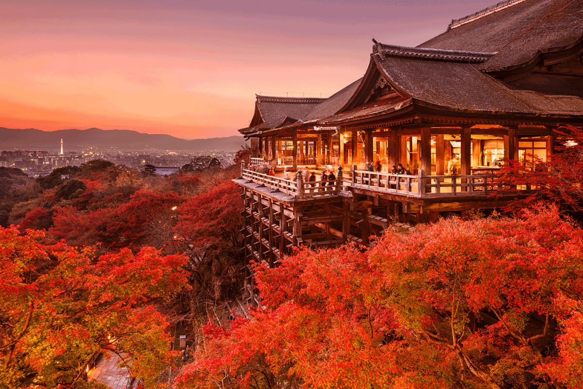 Stunning Shrines and Temples in Japan