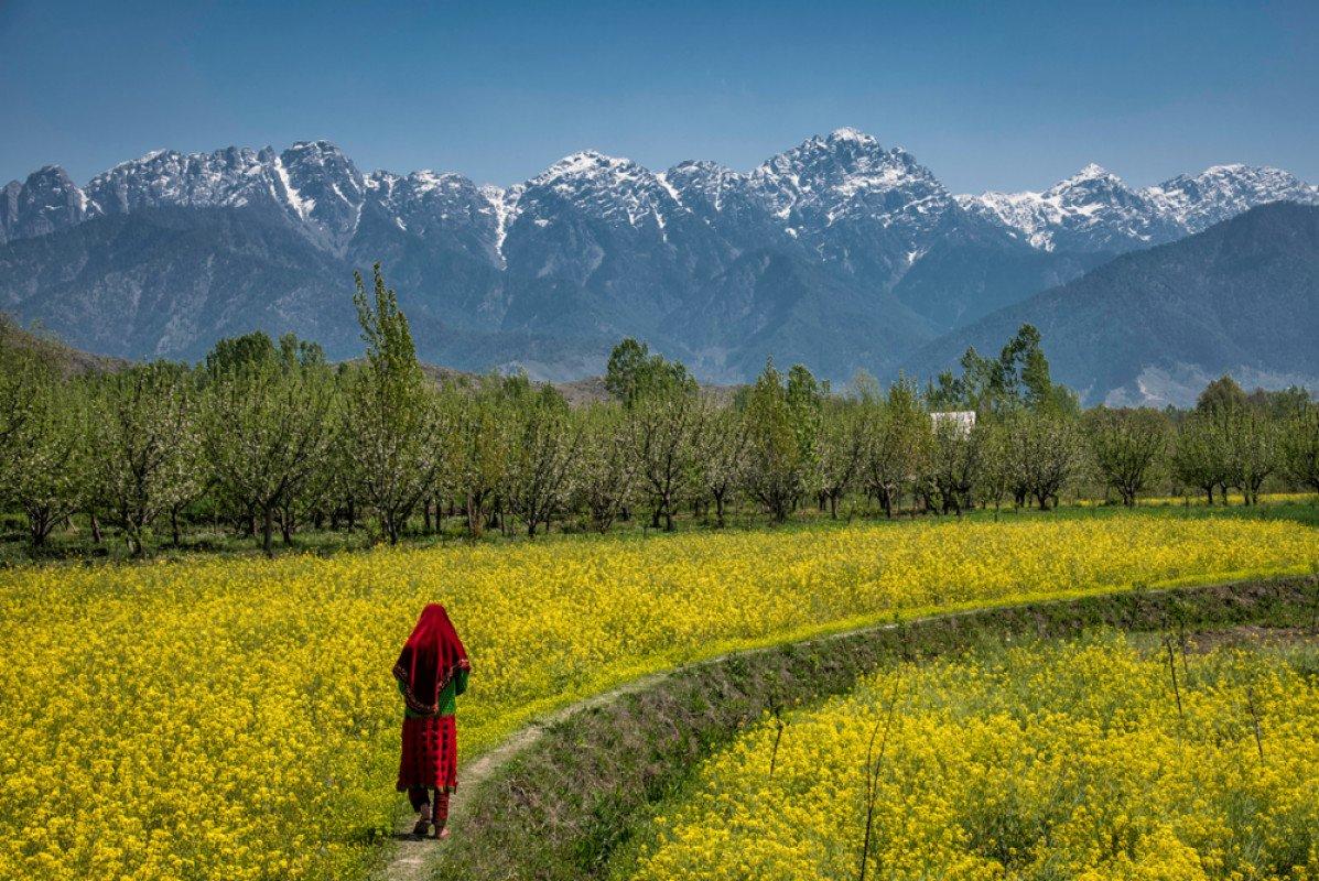 Pahalgam, Kashmir.
