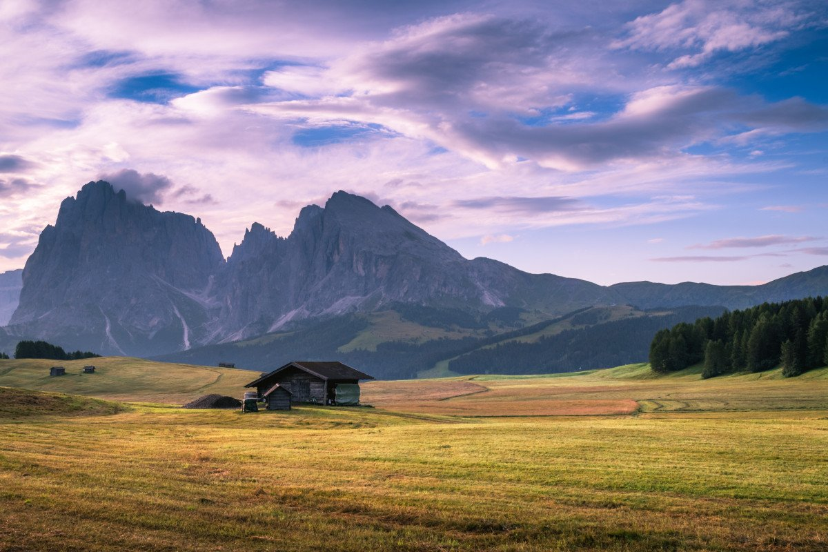 Meadow by Seiser Alm, Kastelruth