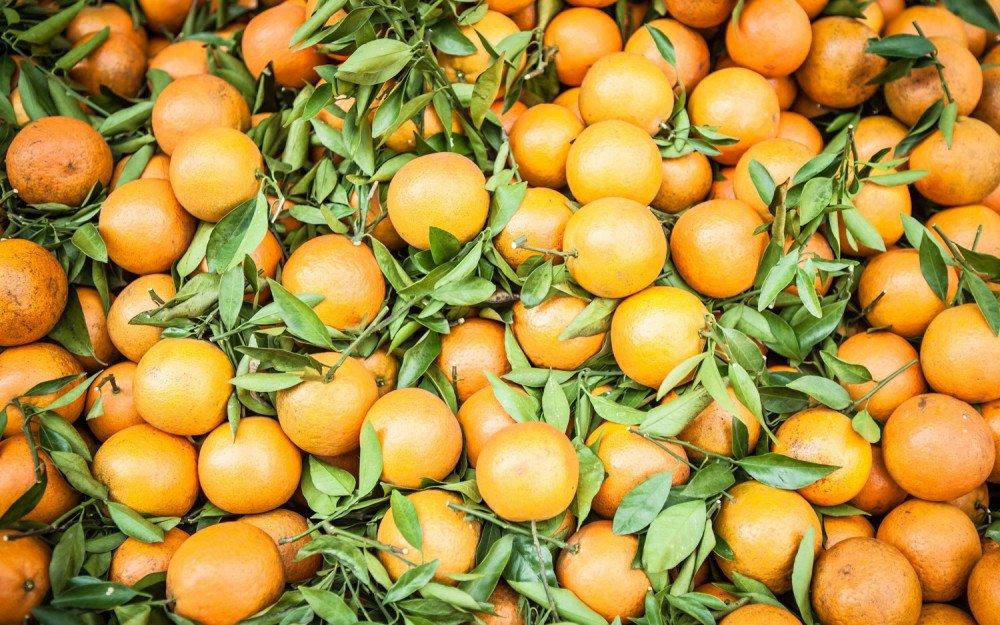A Happy Market: Exploring Kaohsiung, Taiwan's Local Food